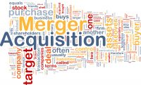 Mergers and Acquisitions Lawyer